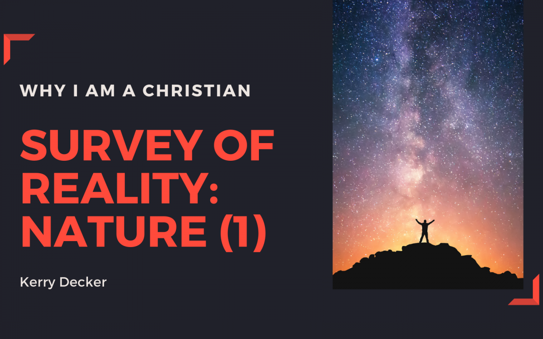 2-My Survey of Reality: Nature (1)